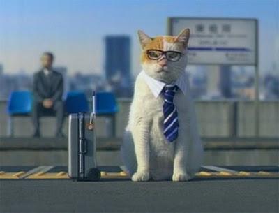 business_cat